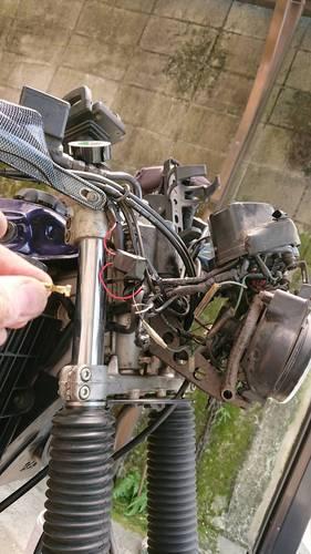 F804B816-7AFF-45C7-89D4-2EDC9A49990D.jpeg